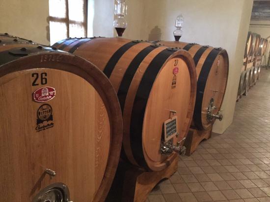 Azienda Agricola Stra: Barrels oak