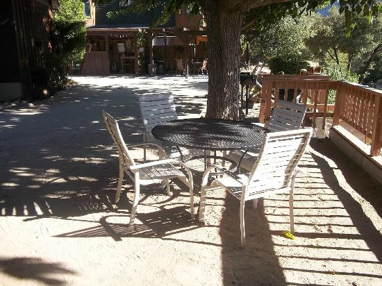 Sequoia Lodge: Rear Patio