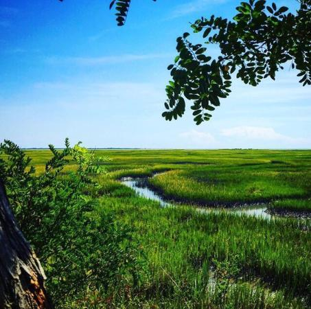Eastern Shore of Virginia National Wildlife Refuge