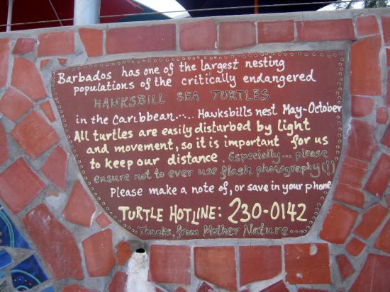 South Coast Boardwalk: Wall plaque