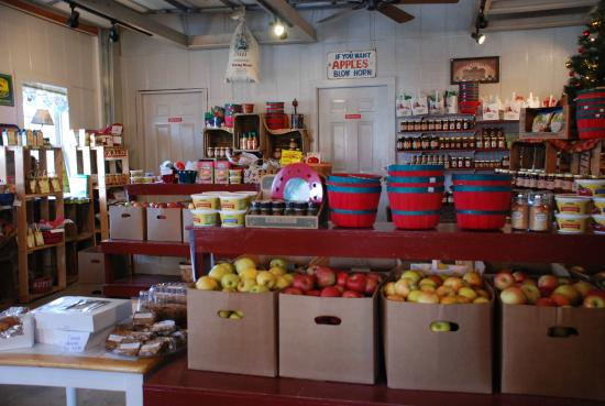 Apple Hill Orchard & Cider Mill
