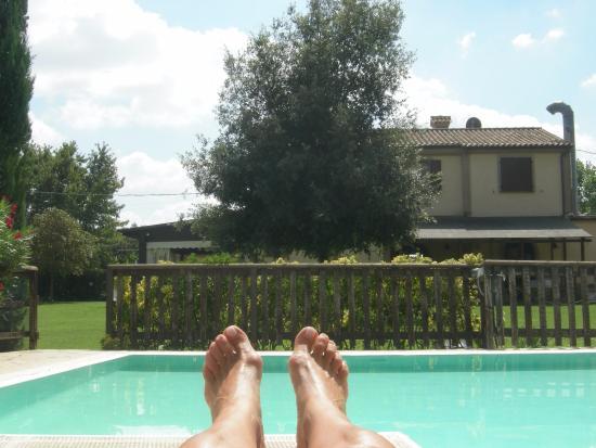 Agriturismo delle Rose: Dalla piscina!!!