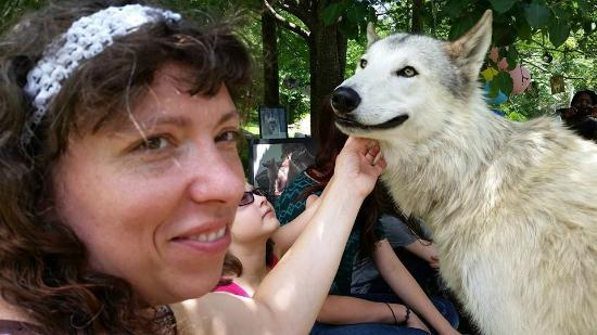 Saint Francis Wolf Sanctuary: Tala smiles with a visitor