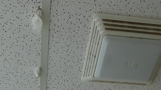 Absecon, Nueva Jersey: another shot of holes in ceiling plugged w/ toilet paper, next to filthy light fixture/fan