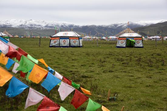 Zoige County, Çin: チベット族のテント(大平原)
