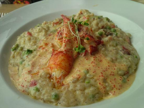 THE CABLE ROOM at the TELEGRAPH HOUSE: Lobster Risotto