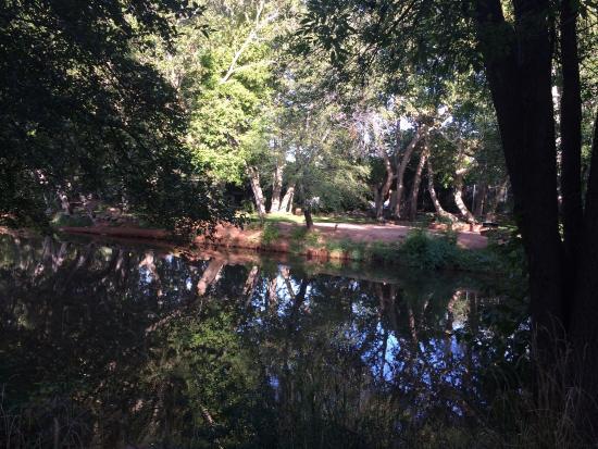 show user reviews above creek sedona arizona