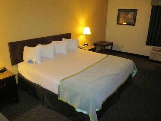 Baymont Inn & Suites Mason: King Bed, Non-smoking