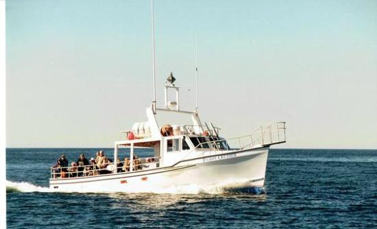 Island Boat Adventures