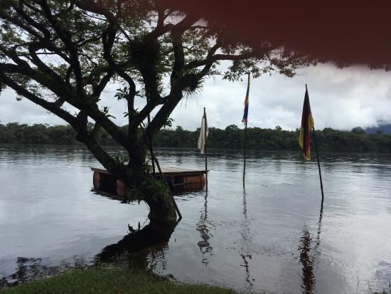 Jungle Rudy's Ucaima Camp: photo1.jpg