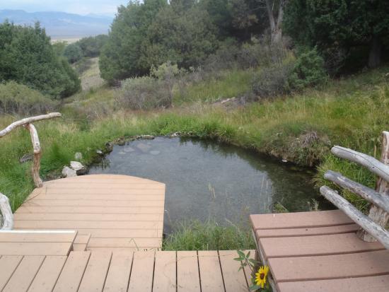 Villa Grove, โคโลราโด: Meadow Pool