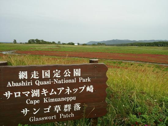 Saroma-cho, Japan: サロマ湖 キムアネップ岬