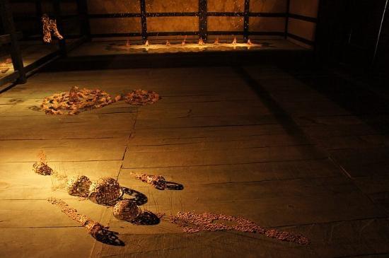 Tomizawa Family Residence : 中之条ビエンナーレのときの写真です