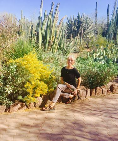 Desert Botanical Garden: A Bright Day In February!