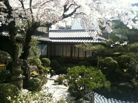 Carpe Diem: Went during the Sakura month few years back. Though is far from the train station but very cozy