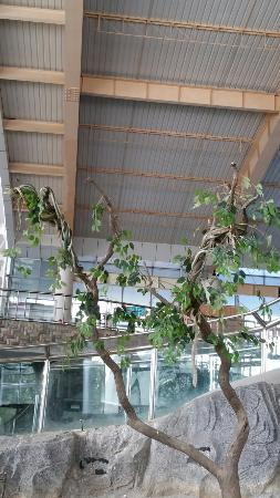 Lvshun Snake Museum: Good place to visit at least once