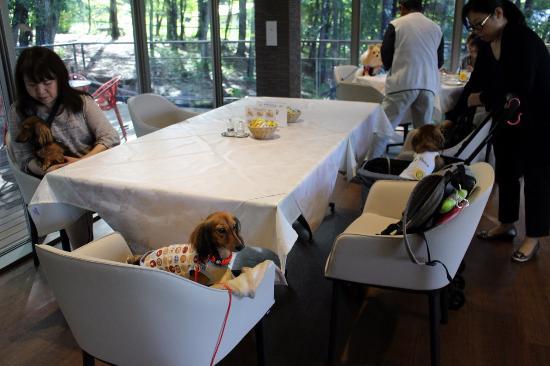 Yatsugatake Wanwan Paradise : ホテル内レストラン