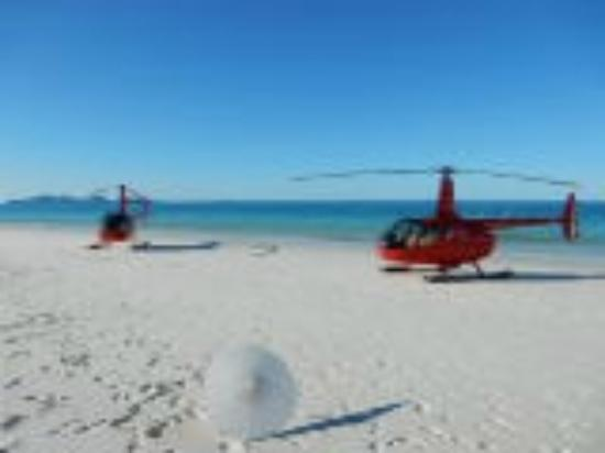 Helitaxi Airlie Beach Australia Top Tips Before You Go With Photos  Tr