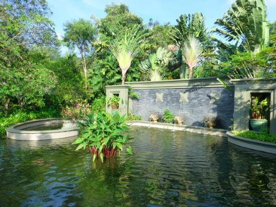 Anantara Layan PhuketResort : Next to the charming Muai Thai shaded outdoor boxing ring, where yoga is also held and ducks wan