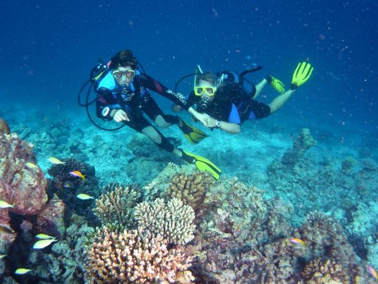 Canareef Resort Maldives: Scuba diving