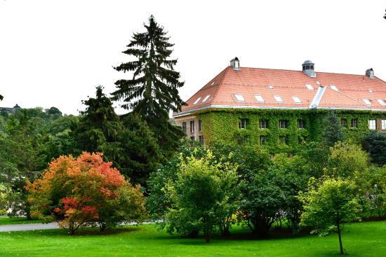 Captivating Botanical Gardens (Botanisk Hage Og Museum): Botanic Gardens, Oslo