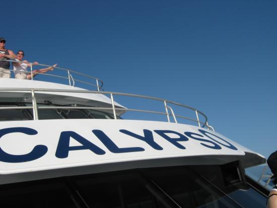 Palm Villas Port Douglas: Calypso boat going to Great Barrier Reef -Low Island