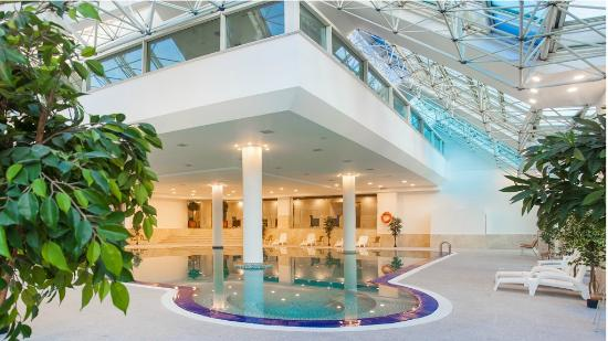 Ramada Plaza Astana: Indoor pool
