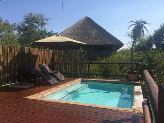 Bushwise Safaris: Swimming pool on upper deck