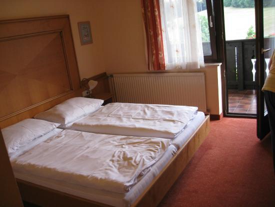 Hotel Wienerwaldhof: Doppelzimmer