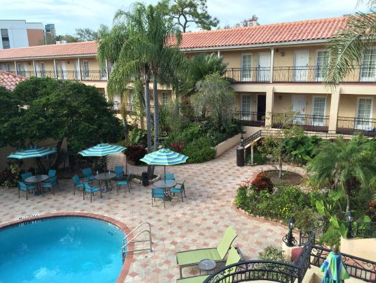 Holiday Inn Hotel Suites Tampa North Busch Gardens Updated 2017 Reviews Price Comparison