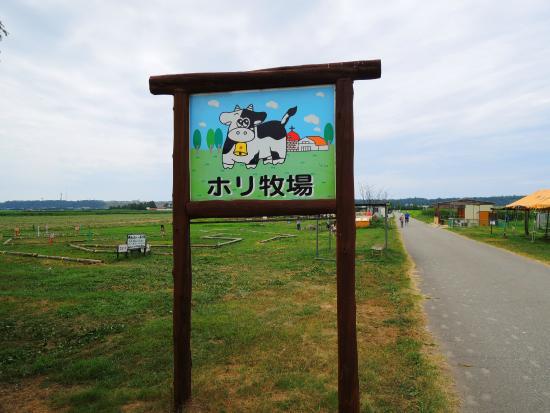 Kahokugata Hori Pasture