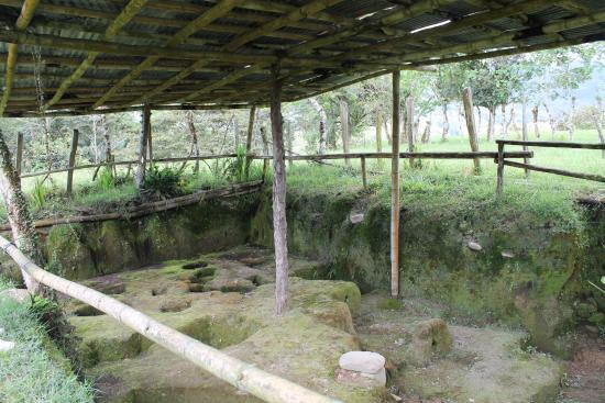 Sitio Barriles Museum: Archeology site