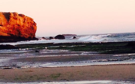 Otter Rock Εικόνα