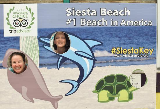 Siesta Key Village: #1 Beach