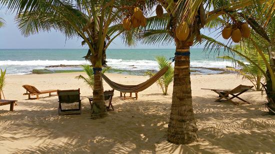 Patini Bungalows Beach Garden Hamac Et Transats Pour Les Clients