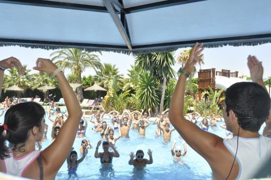Marjal Guardamar Camping & Resort: Baile en la piscina