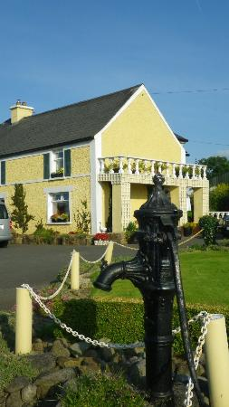 Castlecomer, Irland: Damerstown B&B - beautiful grounds and hosts