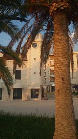 Hotel Pine: -