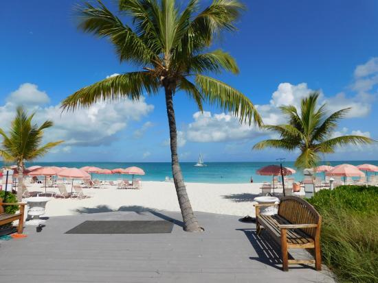 Ocean Club East - Picture of Ocean Club Resort