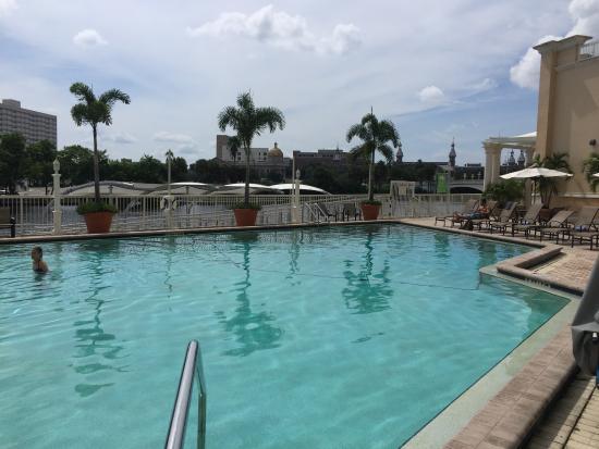 Balcony view of pool picture of sheraton tampa riverwalk hotel tampa tripadvisor for Hillsborough swimming pool prices