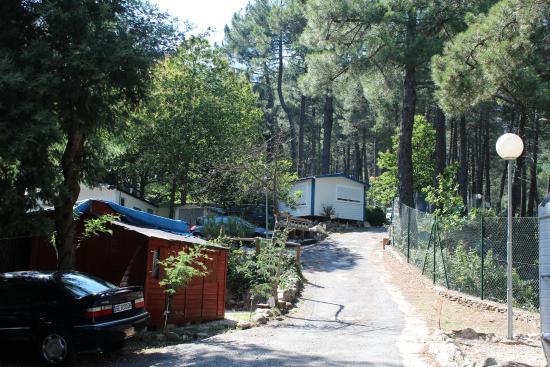 Camping Los Galayos