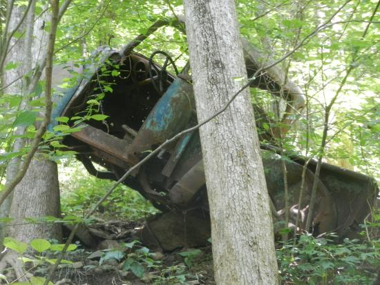 Dawsonville, Georgien: A truck which over the edge of the road a few decades ago.