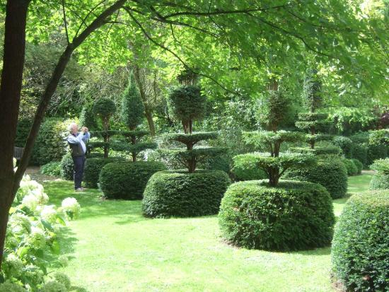 Topiaires au jardin des r collets cassel photo de jardin du mont des r collets cassel - Les jardins des monts d or ...