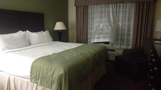 Holiday Inn Daytona Beach LPGA Blvd: King Bed