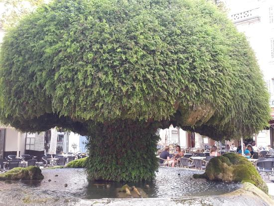 Fontaine moussue picture of fontaine moussue salon de for Accrobranches salon de provence