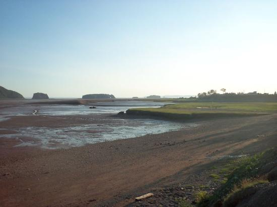 Five Islands Rv Campground and Resort: the ocean floor at resort