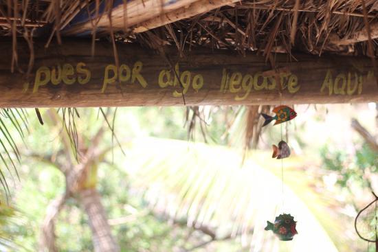 Hostal La Isla: frases hermosas...