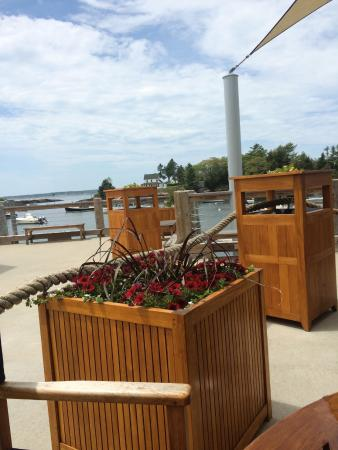 Oliver's at Cozy Harbor: Here is Cozy Harbor, Maine