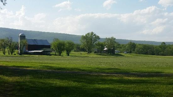 Hedgesville, WV: Lazy A Campground