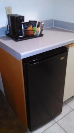 Quality Inn & Suites Houston: Rooms have mini fridges yay!